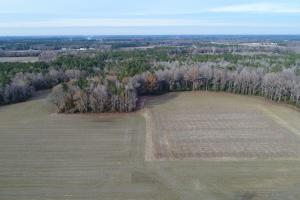 Hinnant-Edgerton Road Farmland & Investment Opportunity - Johnston County NC