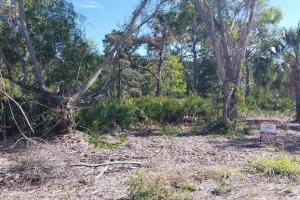 Tropical Pine Island large homesite in Lee, FL (9 of 10)
