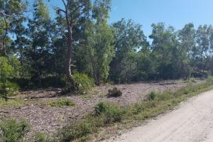 Tropical Pine Island large homesite in Lee, FL (4 of 10)