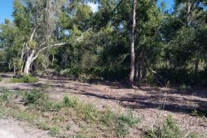 Tropical Pine Island large homesite in Lee, FL (3 of 10)