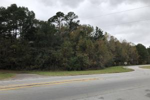 Hardeeville - Savannah Hwy 17 Commercial Parcel in Jasper, SC (3 of 17)
