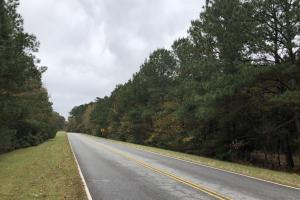 Hardeeville - Savannah Hwy 17 Commercial Parcel in Jasper, SC (17 of 17)