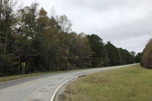 Hardeeville - Savannah Hwy 17 Commercial Parcel in Jasper, SC (16 of 17)