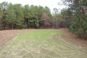 Marbury Waterfront Development, Hunting, and Timber Investment in Elmore, AL (13 of 25)