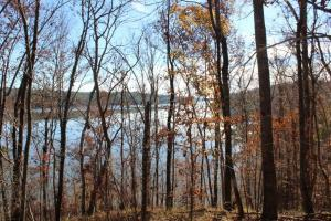Marbury Waterfront Development, Hunting, and Timber Investment in Elmore, AL (6 of 25)