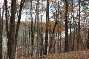 Marbury Waterfront Development, Hunting, and Timber Investment in Elmore, AL (8 of 25)