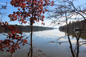 Marbury Waterfront Development, Hunting, and Timber Investment - Elmore County AL