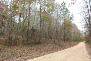 Marbury Waterfront Development, Hunting, and Timber Investment in Elmore, AL (23 of 25)