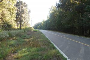 O'Quinn North Tract - 54.8ac in Jefferson, MS (4 of 20)