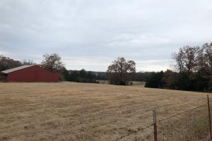 162+/- Acre Country Home & Pasture Land in White, AR (7 of 32)