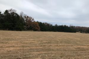 162+/- Acre Country Home & Pasture Land in White, AR (24 of 32)