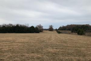 162+/- Acre Country Home & Pasture Land in White, AR (29 of 32)
