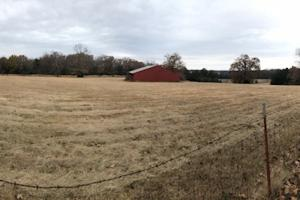 162+/- Acre Country Home & Pasture Land in White, AR (8 of 32)