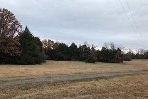 162+/- Acre Country Home & Pasture Land in White, AR (10 of 32)