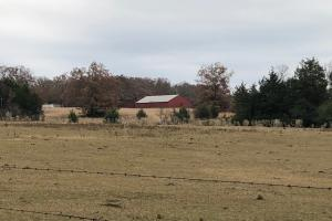 162+/- Acre Country Home & Pasture Land in White, AR (25 of 32)