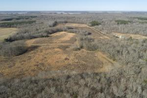 120+/- Acre Recreational Property near LaGrue Bayou - Arkansas County AR
