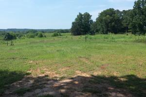 The Davenport Recreational/Hunting  Farm in Crenshaw, AL (32 of 64)