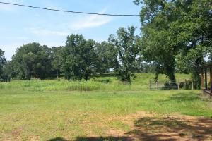 The Davenport Recreational/Hunting  Farm in Crenshaw, AL (28 of 64)