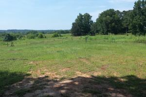 The Davenport Recreational/Hunting  Farm in Crenshaw, AL (36 of 64)