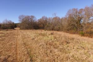 Anderson Farm Land and Homesite - Anderson County SC