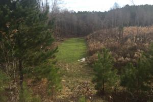 Turn Key Hunting Tract with 2 Mobile Homes - Holmes County MS