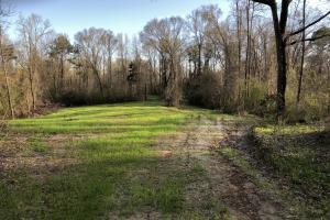 North Sibley Tract- 45.63 AC - Adams County MS