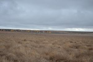 Dry Land Farm Ground For Sale Logan County, KS - Logan County KS