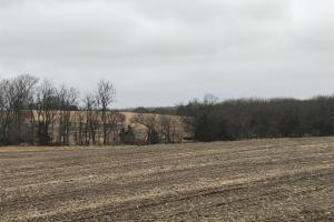 Palmyra 133 Acre, Farm Land for sale in Nebraska.  (2 of 8)