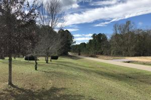 Rose Hill Homesite/Timberland - Covington County AL