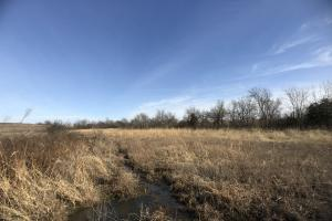 Hackberry Road Tillable and Hunting in Bourbon, KS (14 of 27)