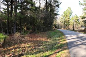 Versatile Timber and Residential Tract - Jones County MS