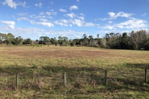 St. Helena Island Open Farm / Pasture Land in Beaufort, SC (26 of 37)