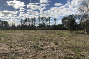 St. Helena Island Open Farm / Pasture Land in Beaufort, SC (22 of 37)