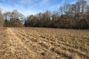 Evergreen Homesite - Conecuh County AL