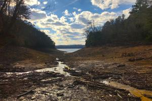 Douglas Lake Acreage - Jefferson County TN