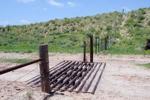 cattle guard (34 of 55)