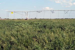 Irrigation pivot (43 of 55)
