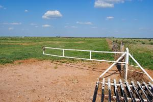cattle guard and gate (28 of 55)