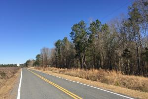 Eastover Homesite with Stream in Richland, SC (8 of 13)