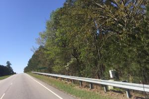 4.57 Acre Hwy 601 Commercial Lot