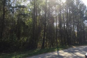 4.93 Acre Hwy 601 Commercial Property in Kershaw, SC (3 of 7)