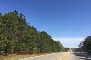 4.93 Acre Hwy 601 Commercial Property - Kershaw County SC