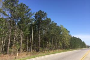 4.93 Acre Hwy 601 Commercial Property in Kershaw, SC (6 of 7)
