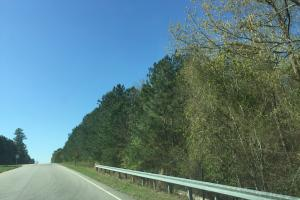3.87 Acre Commercial Hwy 601 Tract in Kershaw, SC (3 of 7)