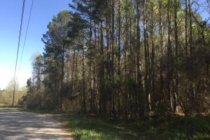 3.87 Acre Commercial Hwy 601 Tract