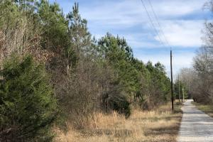 County Line Road Investment and Hunting Tract in Colbert, AL (7 of 8)