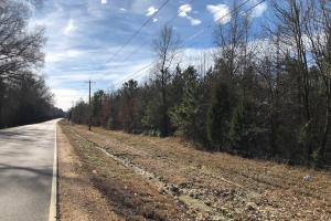 County Line Road Investment and Hunting Tract in Colbert, AL (6 of 8)