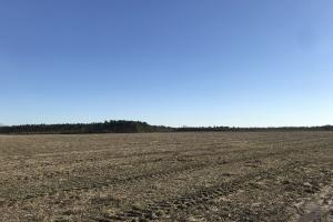 Edinburgh Irrigated Farmland and Timberland in Hoke, NC (8 of 19)