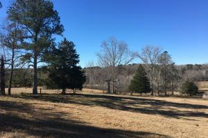 Beautiful Home Overlooking Pastures & Ponds in Abbeville, SC (5 of 74)