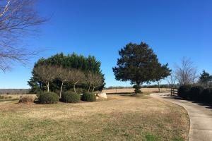 Beautiful Home Overlooking Pastures & Ponds in Abbeville, SC (16 of 74)